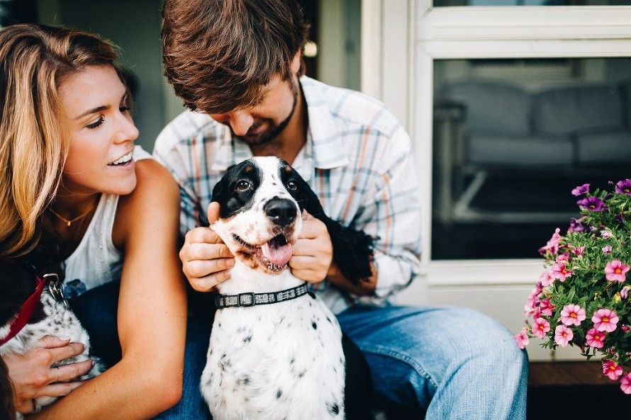 Engagement photos with dogs  | Erin Morrison Photography www.erinmorrisonphotography.com