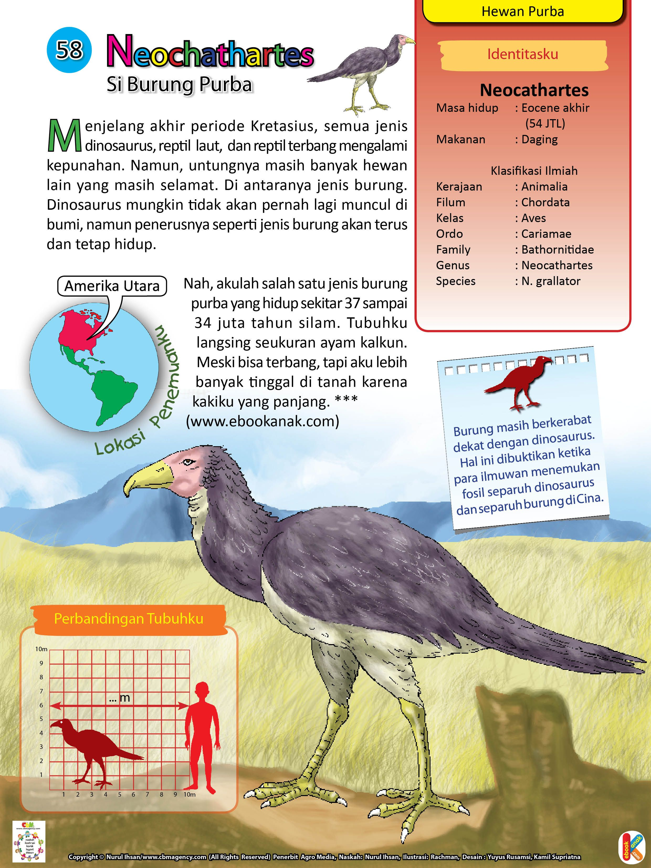 Neochathartes Burung Purba Berkaki Panjang Burung Dinosaurus