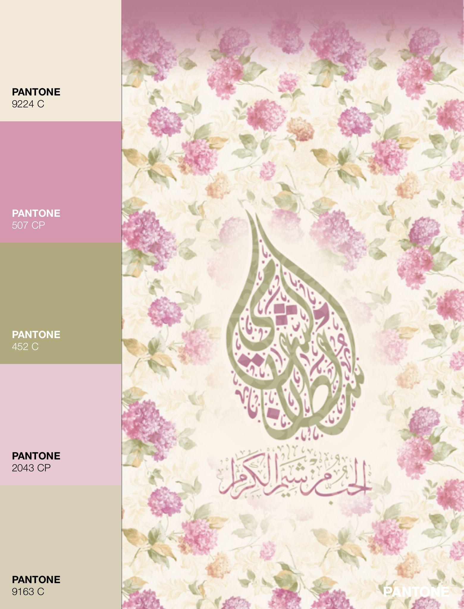 Palettes color design color schemes color design color