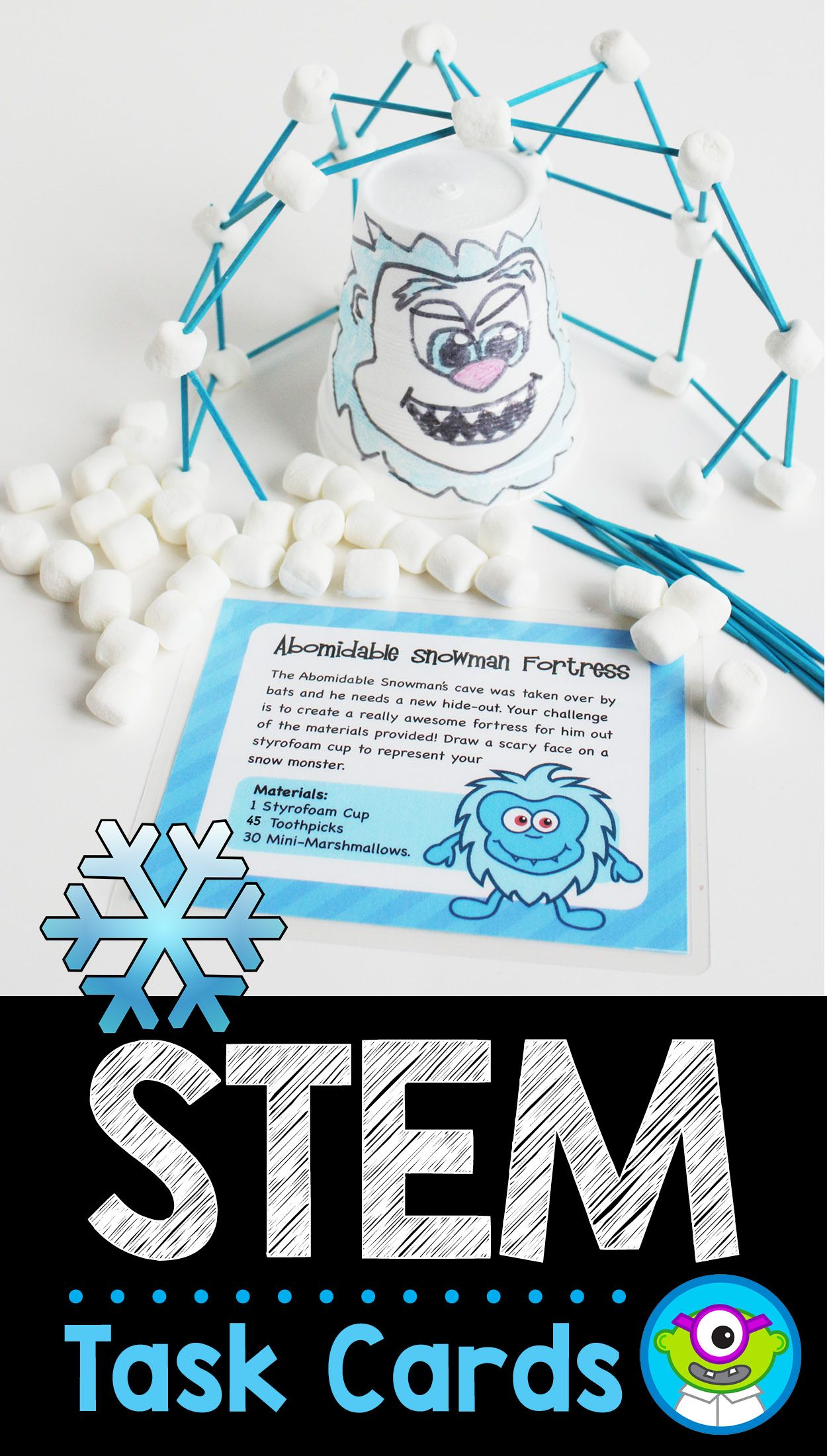 Winter Stem Task Cards January
