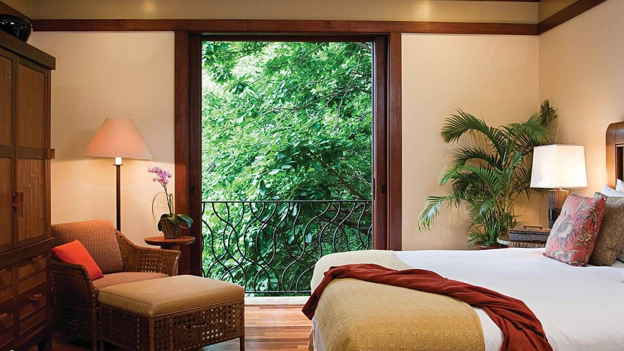 Jungle view... maybe you'll see a monkey! http//www
