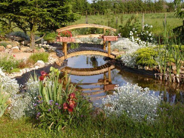 Épinglé par Stahlwart Ho sur Pond | Pinterest | Gamm vert, Idées ...