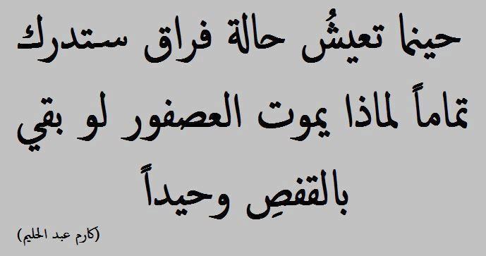 كارم عبد الحليم Arabic Calligraphy Calligraphy Lol