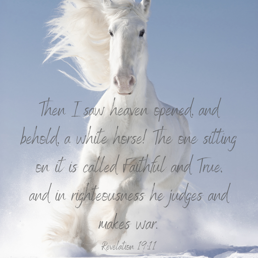 Pin on Equestrian Quotes