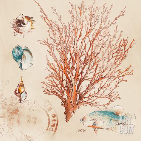 Coral Medley II Art Print by Lanie Loreth at Art.co.uk