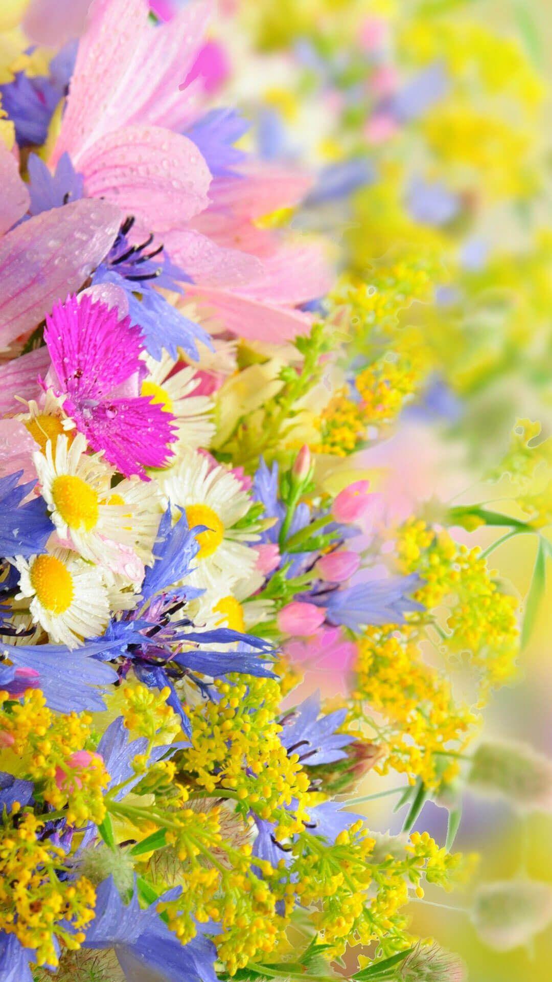 Spring Flower Garden Flower iphone wallpaper, Yellow