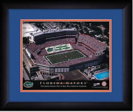 Personalized NFL Florida Gators Name Poster with Border Mat Art Decor Banner