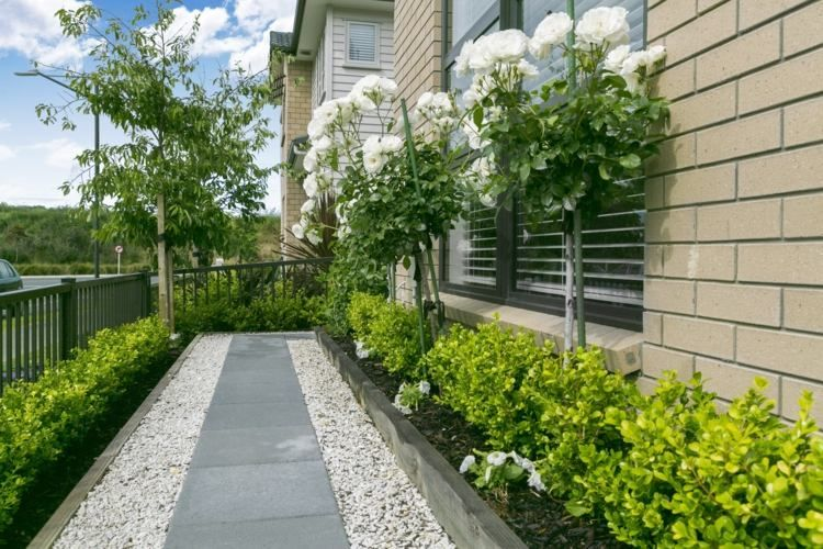 Pflegeleichter Vorgarten Mit Frünen Pflanzen   Garten   Pinterest ... Pflegeleichte Gartengestaltung Pflanzen