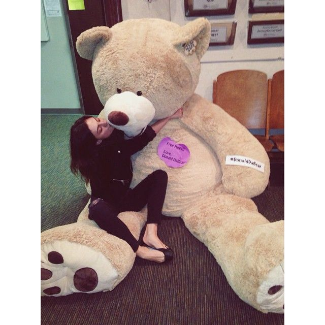 phoebejtonkin's photo on Instagram | This huge bear turned up at #theoriginals office the other day #donalddabear