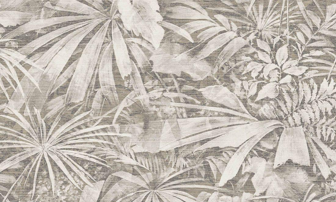 grove   curiosa papier peint   collections   arte - revêtements