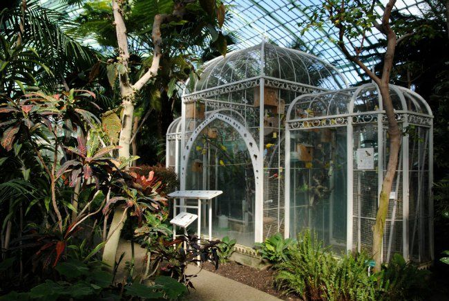 Photo Essay The Grandfather Greenhouse Gardens Of Paris Auteuil
