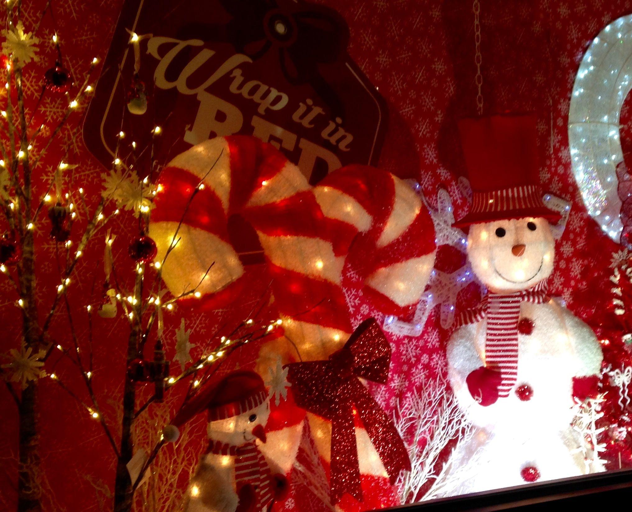 Ace Hardware Window Outdoor Christmas Decorations Christmas Decorations Outdoor Christmas