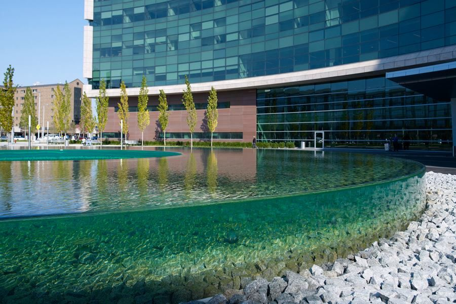 This gorgeous, donut-shaped, water feature welcomes patients