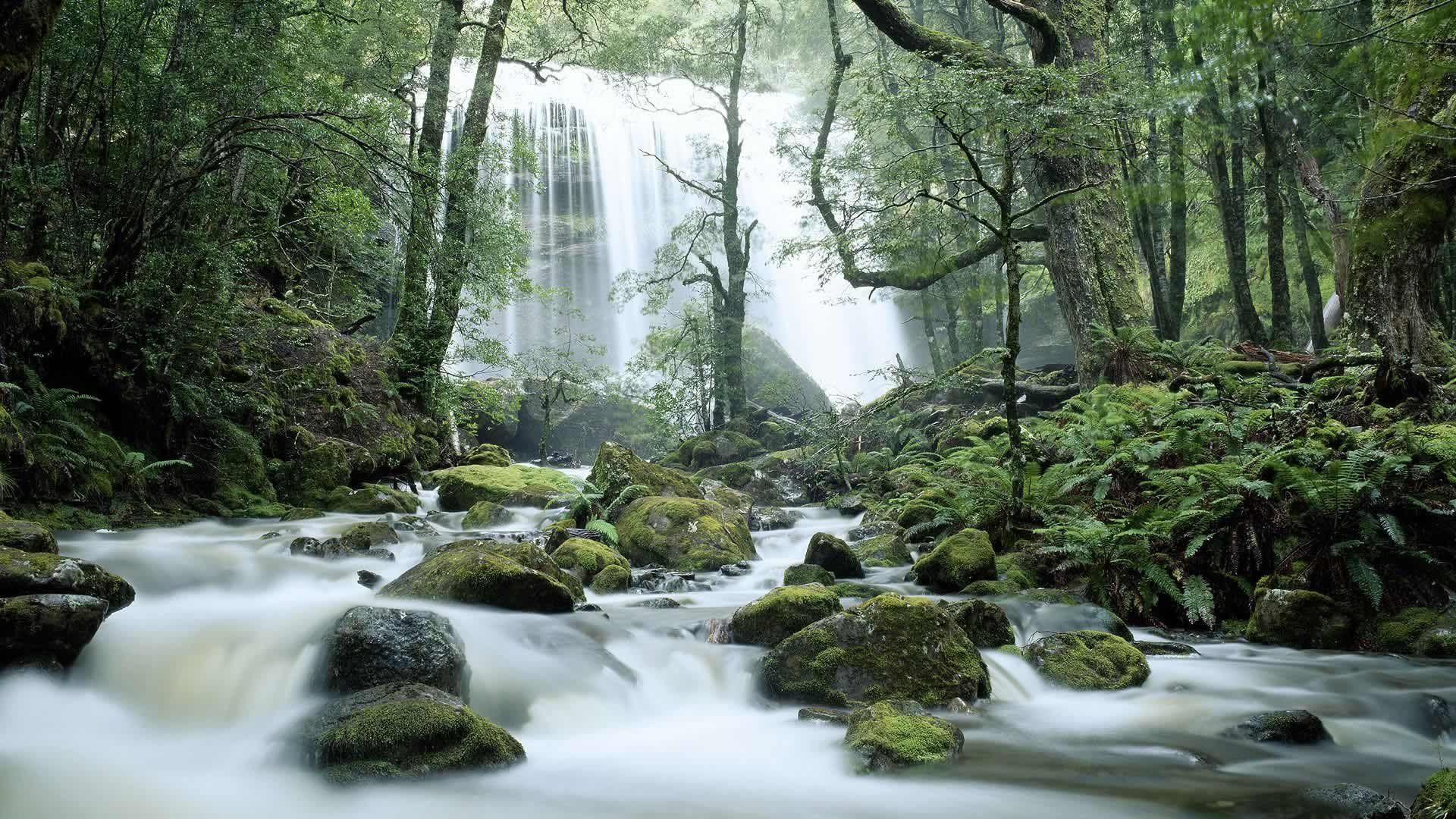Jerusalem River Waterfalls, Tasmania, Australia ( Ted Meadgetty Images)