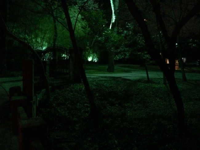 Moonlight effect created from down lights mounted up in tall trees moonlight effect created from down lights mounted up in tall trees casting shadows of branches aloadofball Image collections