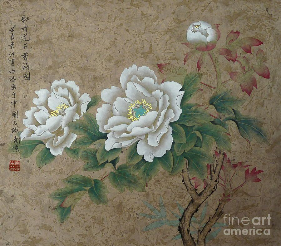 White Rose By Birgit Moldenhauer In 2020 Watercolor Rose Asian