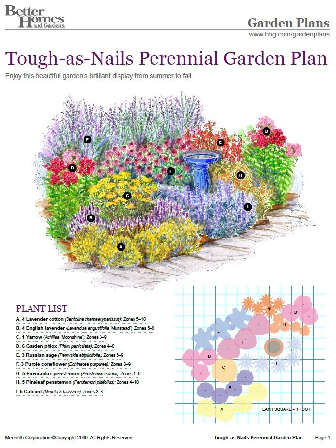 Pin by bonjouryall® on ️ GARDEN | Perennial garden plans ...