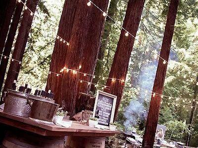 Waterfall Lodge Barn Weddings In The Redwoods Weddings Santa Cruz Wed Northern California Wedding Venues Northern California Wedding California Wedding Venues