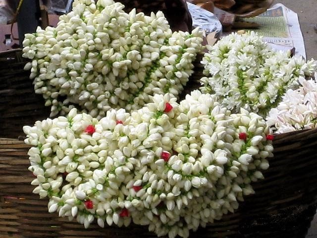 Traditional Natural Jasmine Hair Ornaments Known As Gajra S Flower Garlands Indian Flowers Flowers