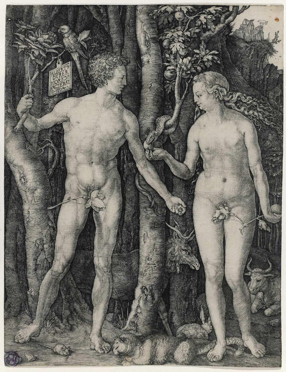 Adán Y Eva Dürer Albrecht 1471 1528 Grabado 1504 Adan Y Eva Durero Alberto Durero