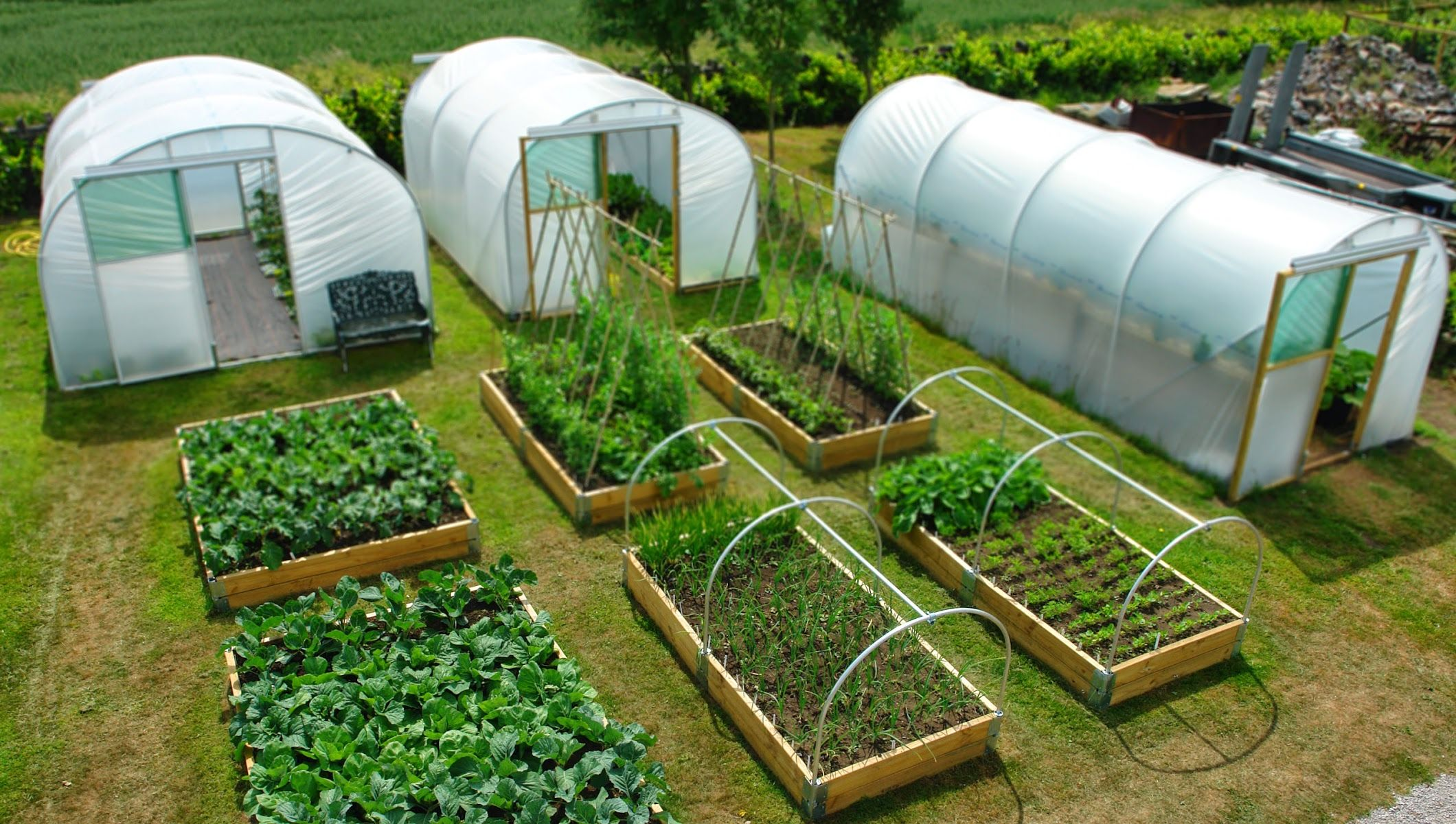Northern Polytunnels From How To Build Your Polytunnel To How To