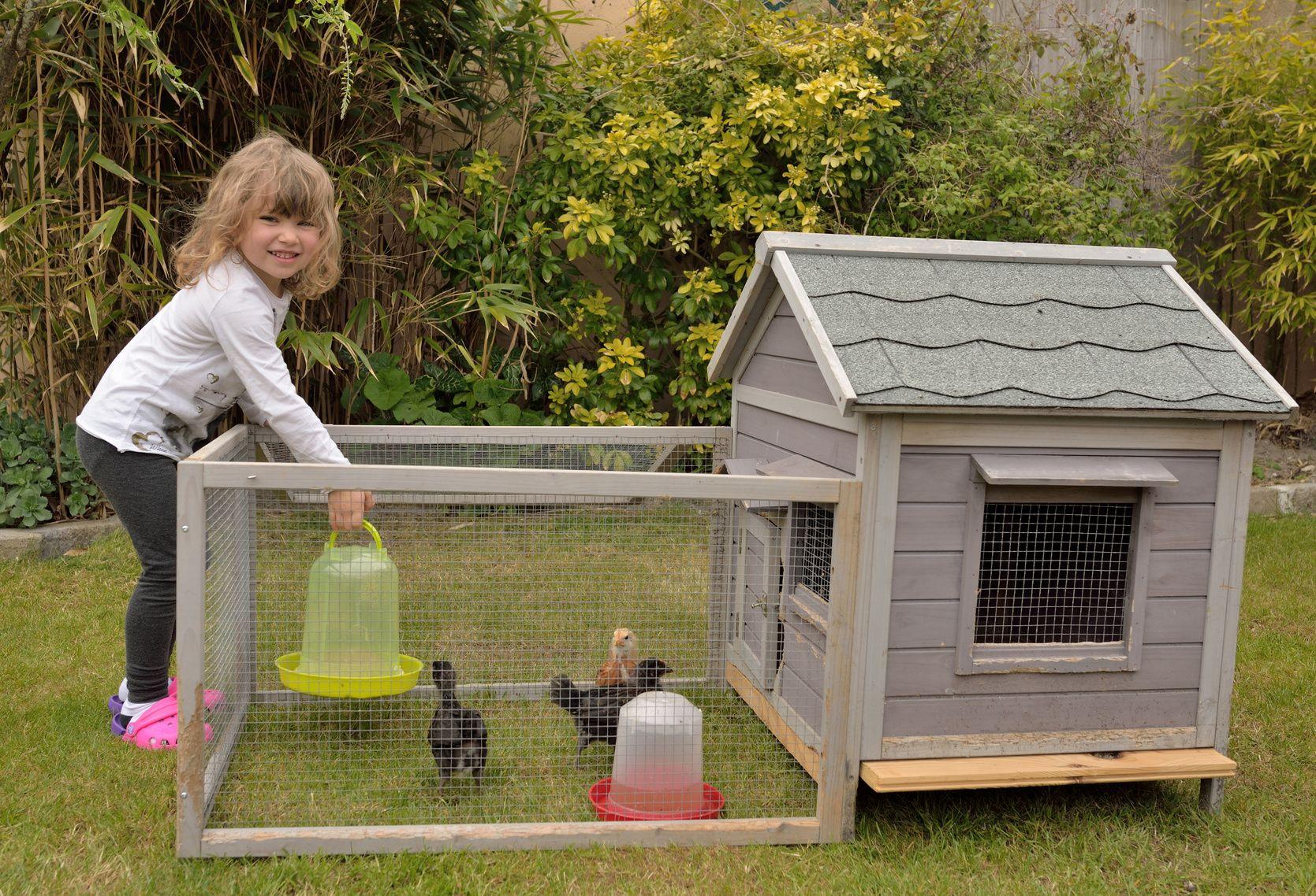 details llll hühnerstall selber bauen | elektrosystem