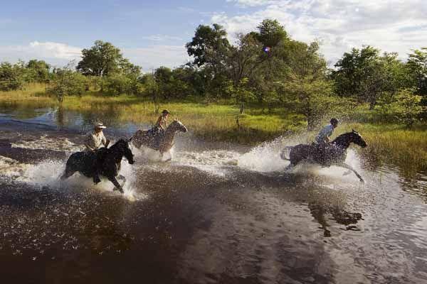 RANDO CHEVAL - Voyage à cheval, randonnée, safari et séjours équestres dans le…