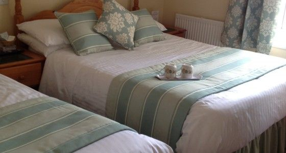 Edgcumbe Guest House Plymouth Devon Pet Friendly Seaside Bed And