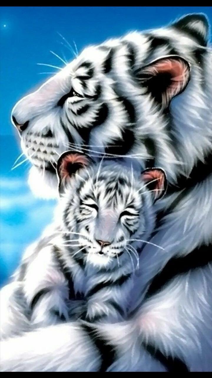 Free Bengal Kittens Pa