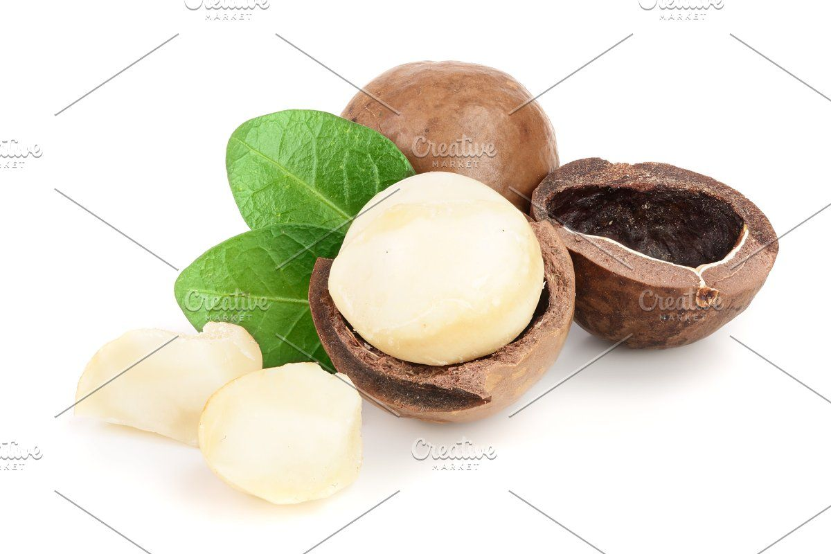 e044dde8339b93b97085bcd4a2066cbb - How To Get Macadamia Nuts Out Of Their Shells