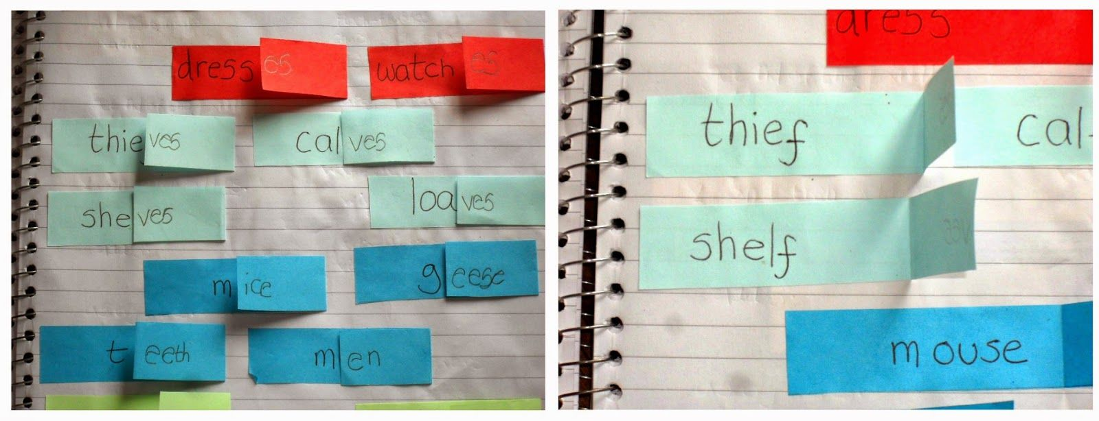 plural rules printable worksheets for interactive note books ...