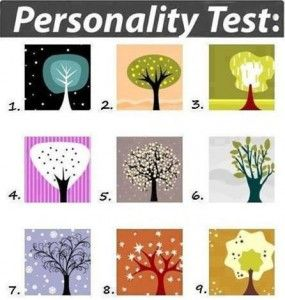 what kind of person are you quiz