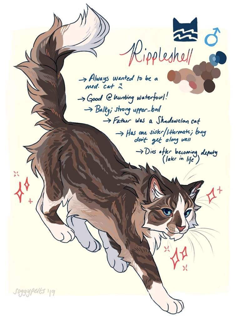 Gov Assigned Cat By Soggypelts With Images Warrior Cat