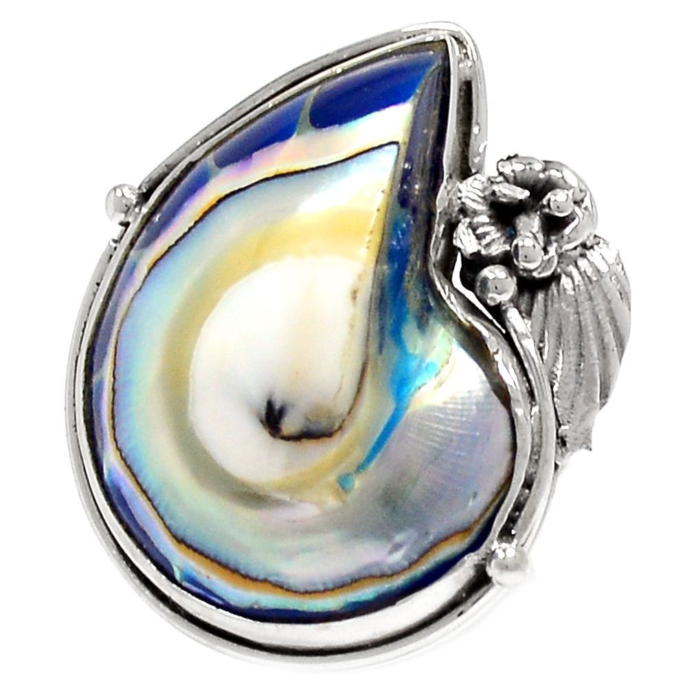 Nautilus Shell 925 Sterling Silver Ring Jewelry s.7 RR6823 | eBay