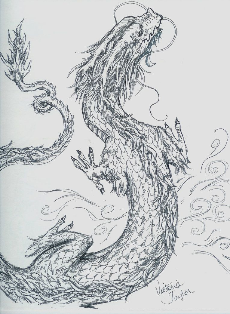 Chinese_Dragon_sketch_by_DragonSpark.jpg (765×1044) | Art ...