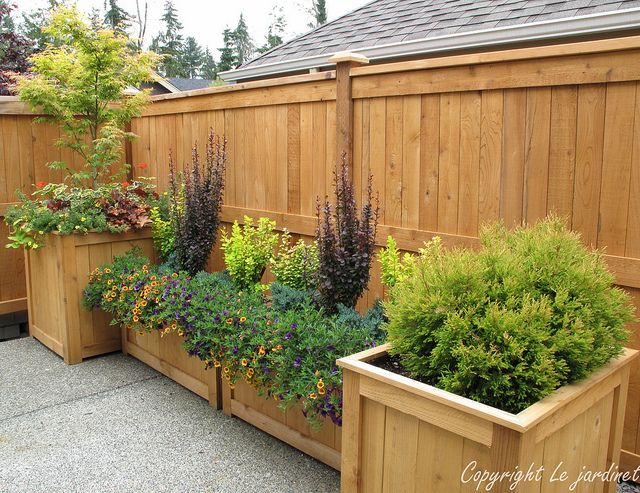 By varying the height and depth of these cedar planters I was able to create the illusion of a billowing garden border on this otherwise barren concrete patio. Anchoring the design with trees and shrubs enhanced the effect. Design by Le jardinet