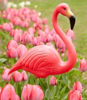 Do You Play Croquet Ill Look For Garden Flamingos Dollar