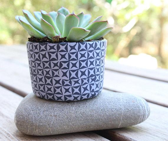 Indoor Succulent Plant Pots