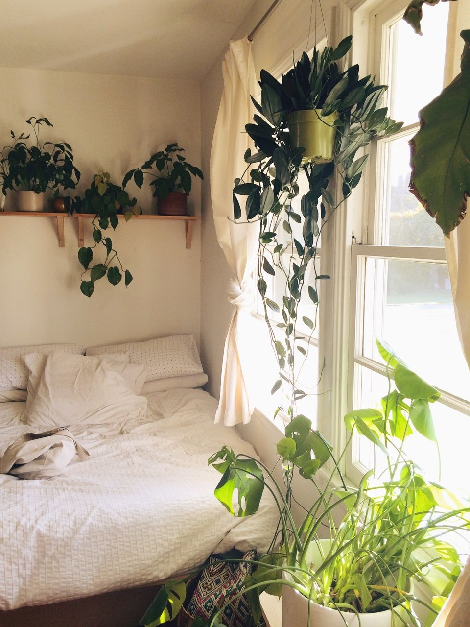 White bedroom with plants tumblr - Plants On A Shelf Bedroom Plants