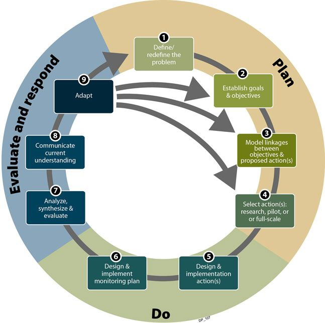 adaptive management framework diagram project management. Black Bedroom Furniture Sets. Home Design Ideas
