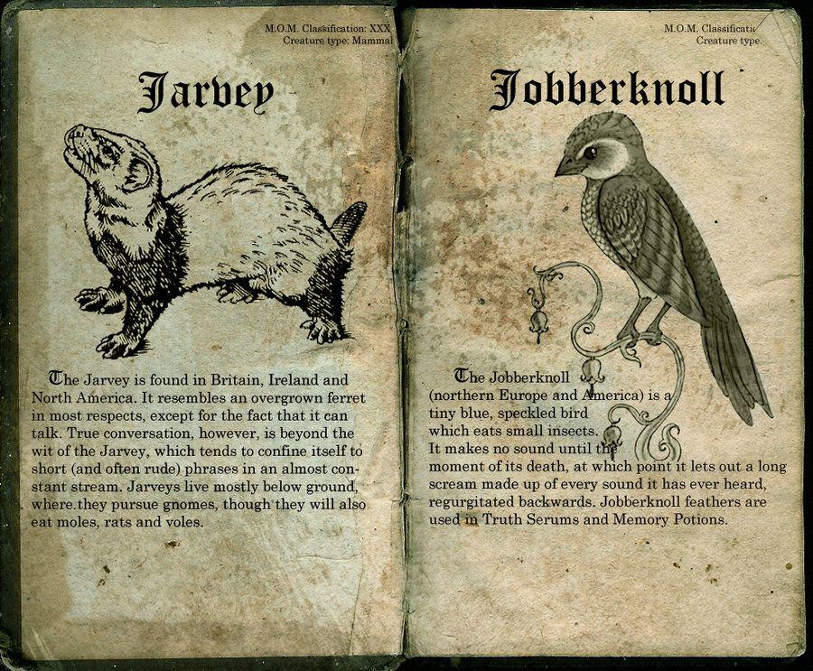 Jarvey Harry Potter