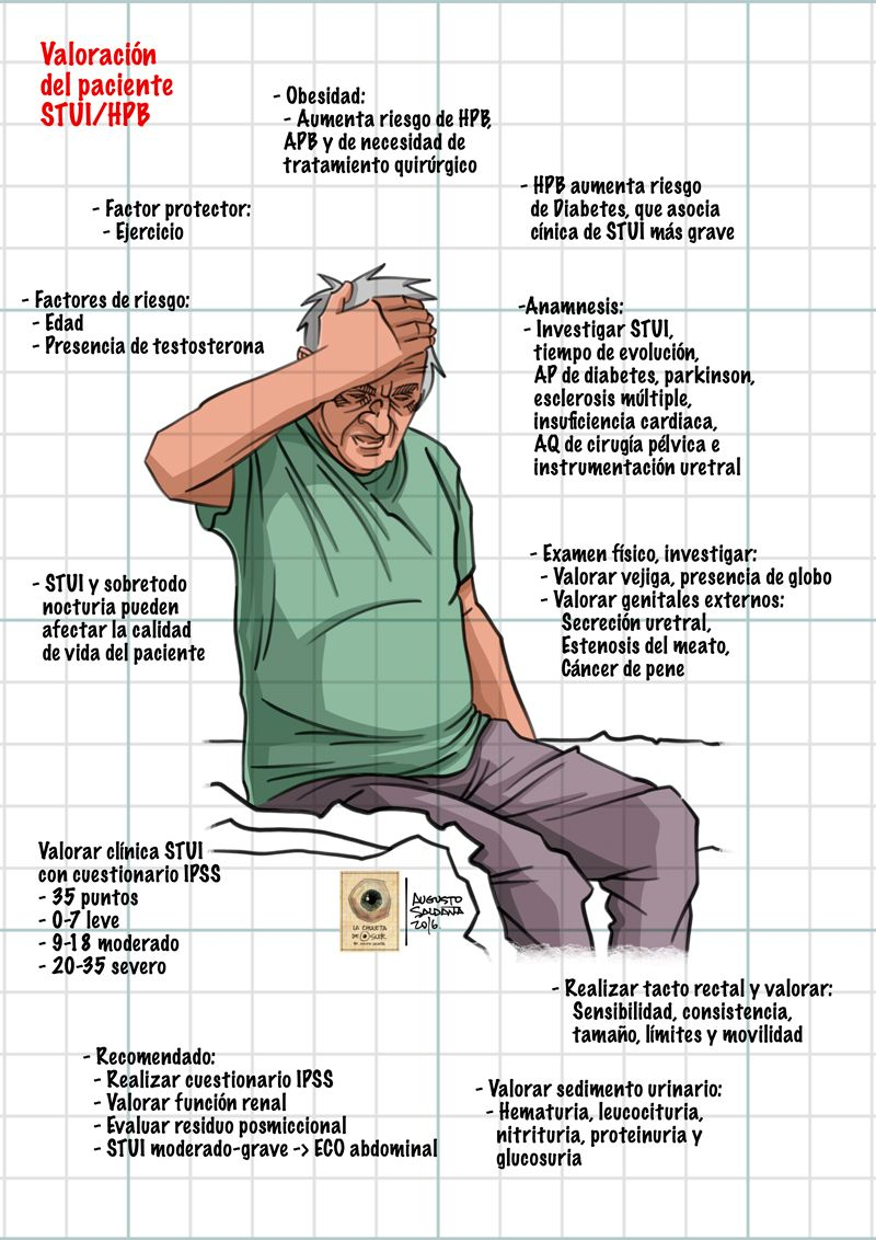hipertrofia prostática leve cosa en español