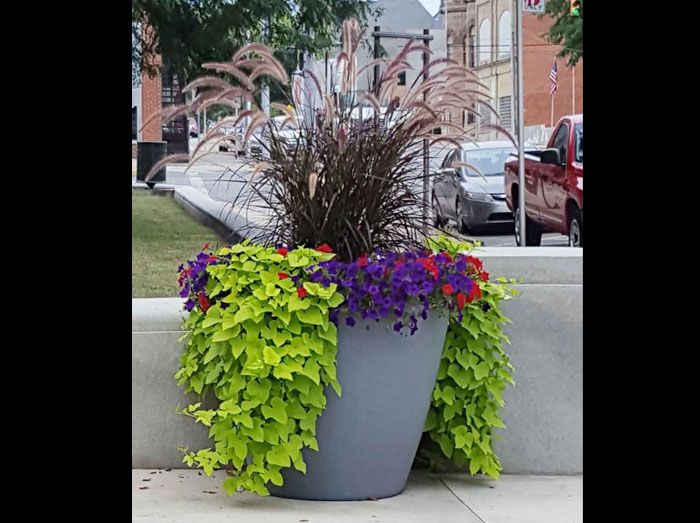 Hardin Ohio Commercial Self Watering Planter Extra Large Beautiful Outdoor Planter Self Watering Planter Large Outdoor Planters Container Gardening
