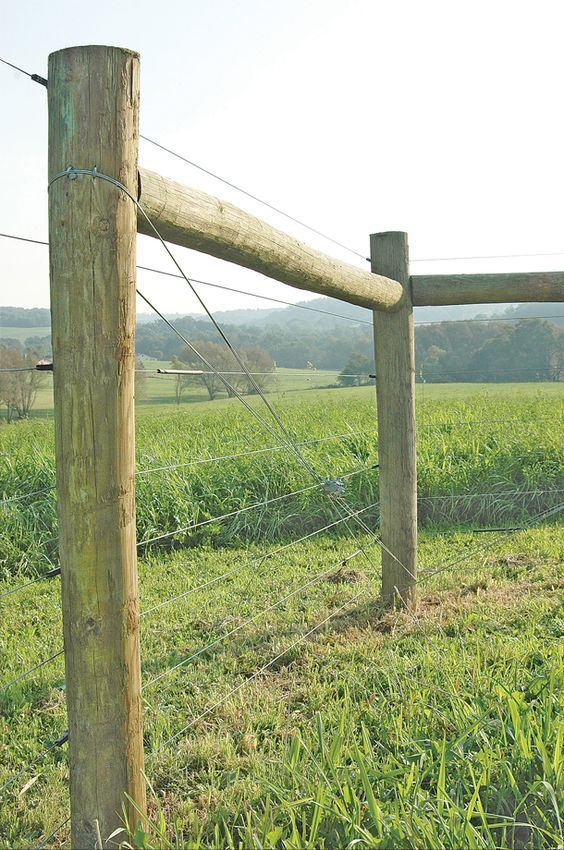 Pin By Sq Farms On Horse Farm Fencing Field Fence Sheep