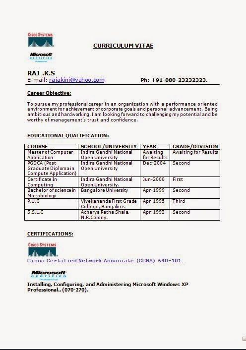 how to write biodata Sample Template Example ofExcellent CV / Resume ...