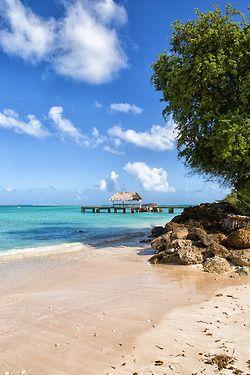 Tobago ♥ | Uncommon Caribbean Photobook | Uncommon Trinidad