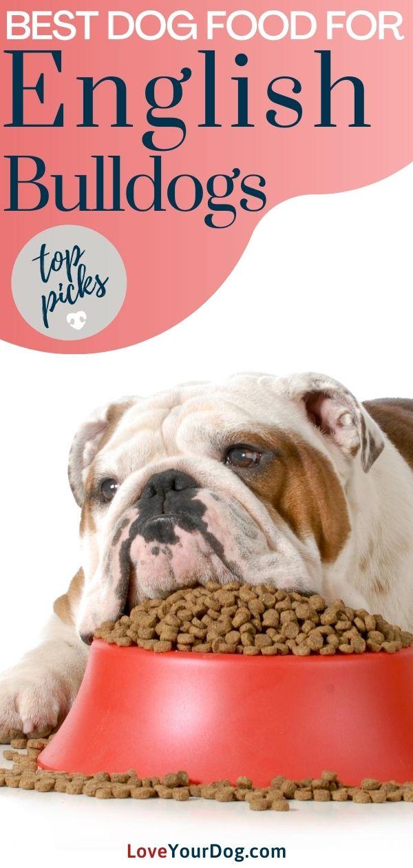 Best Dog Foods For English Bulldogs Puppies Adults More In 2020 Best Dog Food Dog Food Recipes English Bulldog Dog