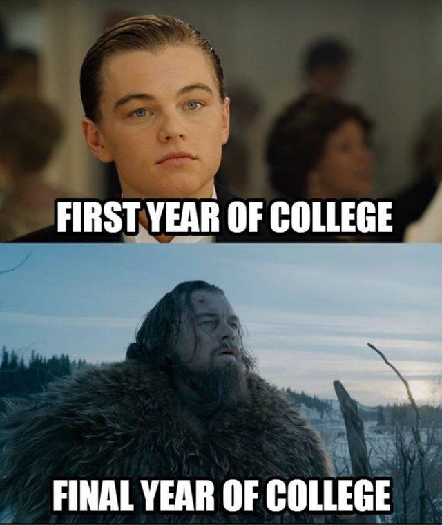 Then Grad School Steemit College Memes Crazy Funny Memes College Fun