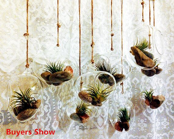 Set of 3 Air Plant Holders/Onion Terrarium //Indoor Succulent Garden // Hanging Eggs Shaped Glass Planters by NewDreamWorld on Etsy https://www.etsy.com/ca/listing/255584468/set-of-3-air-plant-holdersonion