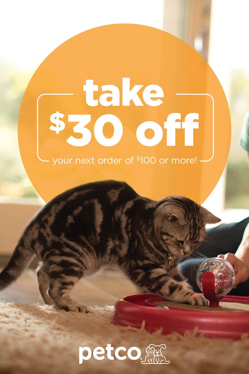 Spark Your Pet S Curiosity With Adorable Toys And Pet Accessories From Petco From Chews And Plush Toys To T Petco Discount Pet Supplies Pets